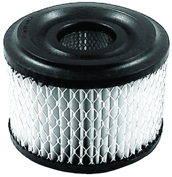Picture of AIR FILTER BRIGGS & STRATTON