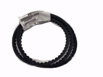 Picture of V-Belt
