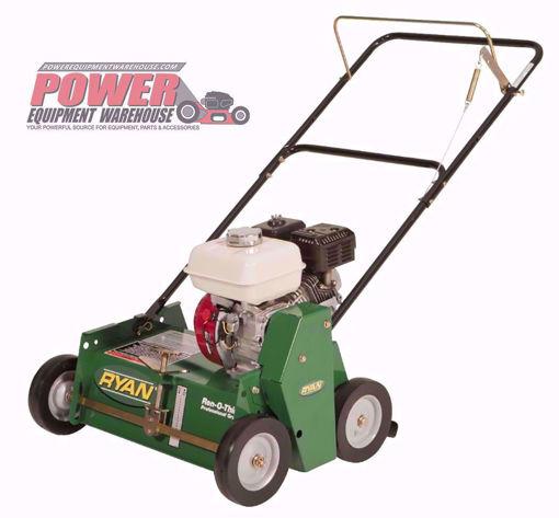 Ryan, sod,lawn maintenance, lawn care, turf