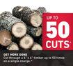chainsaw, tree cutting, logs